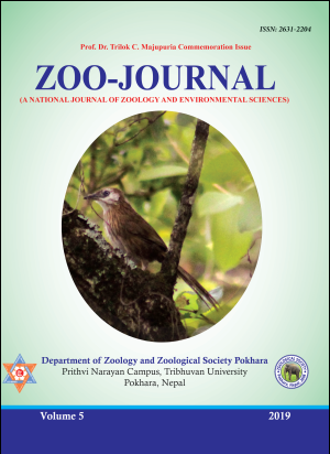 Cover ZOOJ