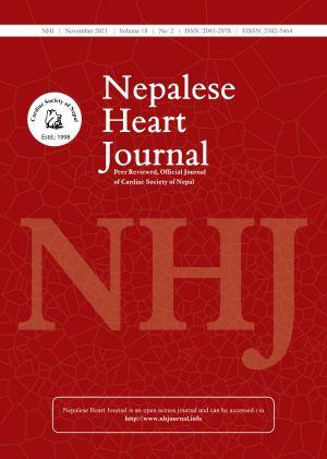 NHJ cover